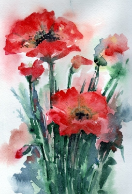 Poppies bouquet