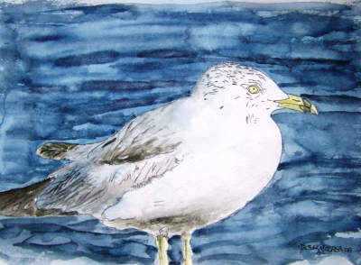 Seagull bird painting art print