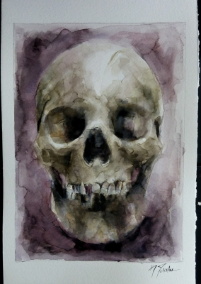 Skull with background
