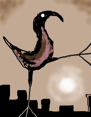 city bird and moon